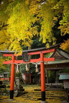 "Ochiba Jinja (落葉神社), meaning ""fallen-leaf shrine"", Kyoto, Japan Go To Japan, Japan Art, Japanese Shrine, Tokyo Streets, Japan Street, Landscape Concept, Aesthetic Japan, Japanese Architecture, Temples"