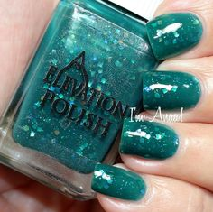 Elevation Polish Pointless Forest 2