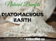 Diatomaceous Earth has long list of natural uses and benefits. Take a look at the many ways to use DE around your home and to benefit your body.