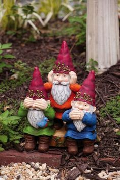 Gnome Sweet Gnome On Pinterest Gnomes Garden Gnomes And