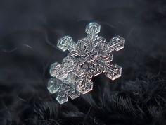 Photographer Uses Cheap Home-Made Camera Rig To Take Stunning Close-Ups of Snowflakes | Bored Panda
