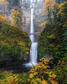 Прекрасная природа в фотографиях Росса Липсона (Ross Lipson)