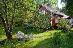 Anne Tarsalaisen puutarhassa elää koko perheen historia   Kodin Kuvalehti