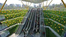 Estación de Central Park (Kaohsiung, Taiwan)  Los pasajeros que salen a la superficie en la estación de Central Park en la ciudad Kaohsiung de Taiwan no podrán olvidar el impresionante jardín de girasoles que envuelve las escaleras del Metro. Todo un efecto de color y originalidad. El sistema de metro de esta ciudad, en funcionamiento desde 2008, se conoce como KMRT (Rápido tránsito de masas de Kaohsiung) y posee varias de las más bellas estaciones que existen en el mundo