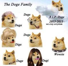 See more 'Doge' images on Know Your Meme! Best Memes, Dankest Memes, Shibu Inu, Shiba Inu Doge, Buy Dogecoin, Meme Characters, Baby Pizza, Doge Meme, Lol Text