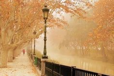 Walking in Paris under the lamp light, with a misty rain