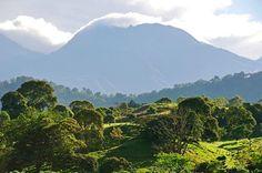 Una increíble foto del Parque Nacional Volcán Barú! Te atreves a subir a la cima? Checkea nuestros tours y aventuras en http://ift.tt/28QJ9xr