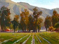 Eucalyptus Fields by Jim Wodark Oil ~ 12 x 16