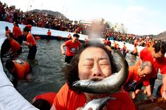 Jeon Heon Kyun - EPA, Jan. 5, 2014. Visitors are seen fishing at a frozen river during the Hwacheon Sancheoneo Ice Festival in Hwacheon-gun, Gangwon province, South Korea.