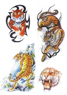 20 Best Traditional Tiger Tattoo Drawing Images Tiger Tattoo