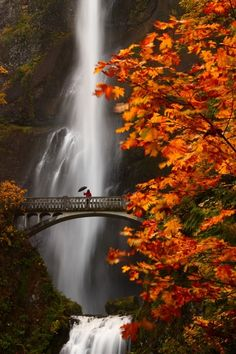 """Autumn ~ Multnomah Falls, OR."""