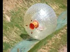 ▶ Zorb Water Zorbing - YouTube