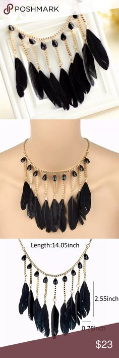 Feather Necklace NWOT Gold necklace with black feathers and black beads. Jewelry Necklaces