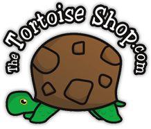 The Tortoise Shop Ltd