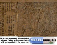 #canapainpillole Il primo trattato di medicina cinese (2800 a.C.) menziona gli usi medici della #canapa. #bottegadellacanapa