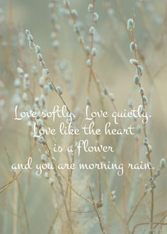 Love Softly ~ Love Quietly ~ Love like the Heart is a flower and you are the morning rain ⊰♡⊱ Love Words, Beautiful Words, Love Is Sweet, Love You, Affirmations, The Garden Of Words, Morning Rain, Early Morning, Best Of Tumblr