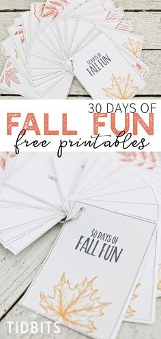 Pick a day, any Fall day and enjoy one of these Fall activities found in the 30 Days of Fall Fun free printable activity cards. Fall Planters, Autumn Activities, Fun Activities, Autumn Decorating, Craft Free, Autumn Inspiration, Design Inspiration, Fall Home Decor, Blank Cards