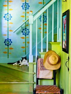 Farm house cat and painted wall, Photo by: Rikki Snyder