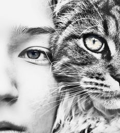 love the way the black and white bring out so many details for both the cat and the human. The eyes look fantastic!