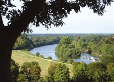View from Richmond Hill Richmond upon Thames Surrey Richmond Upon Thames, Richmond Hill, River Thames, Photo Postcards, Best Cities, Surrey, Small Towns, Places Ive Been, England