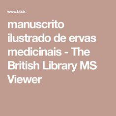 manuscrito ilustrado de ervas medicinais - The British Library MS Viewer