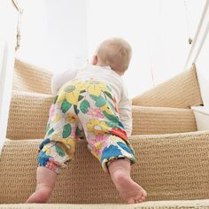 Following your cutie crawling up the stairs