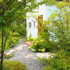のイングリッシュガーデン/雑木の庭/ガーデニング/植物/NO GREEN NO LIFE/玄関/入り口…などについてのインテリア実例を紹介。(この写真は 2014-08-29 18:10:37 に共有されました)