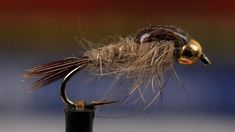 Gold Ribbed Hares Ear Nymph by Tightline Productions. Detailed instructions for tying a Gold Ribbed Hares Ear Nymph.