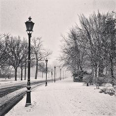 berlin in the snow