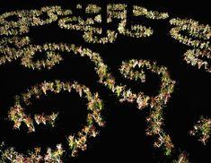 Plantas dançam no 'Jardim do Éden'  Joana Vasconcelos arma labirinto em Paris