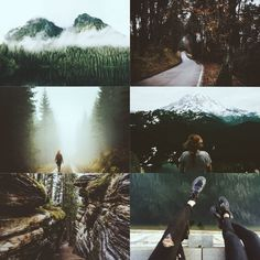 """Harry Potter Aesthetic: Forbidden Forest   """"If you want die horribly, follow me to the Forbidden Forest."""""""