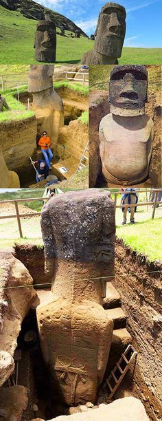 Easter Island statues buried to shoulder height on the slope of a volcano ref. Van Tilburg, a fellow Institute of Archaeology, UCLA. Ancient Mysteries, Ancient Ruins, Ancient Artifacts, Ancient History, Ancient Egypt, European History, Ancient Greece, American History, Easter Island Statues