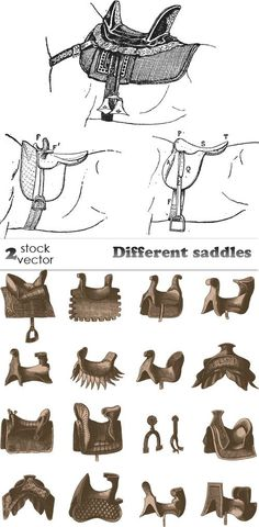 Different saddles