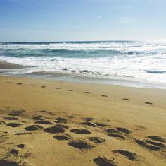 Manhattan beach - california