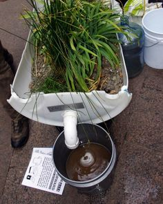 The Urban Farming Renaissance. ~ Matt Mellen, Aug 16, 2012