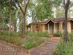 Wild Chalet Resort - Kanha Madhya Pradesh, India Travel, Lodges, Wildlife, Plants, Cabins, Plant, Chalets, Planets