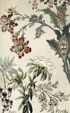 Japanese Fantasy Flowers - Art Deco floral  - TROWBRIDGE antique archivesCode: 965)
