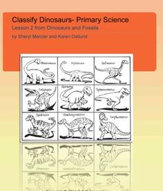 Have students work on the scientific practice of classification with dinosaur cards and sorting activities. This is lesson 2 in a series that explo...
