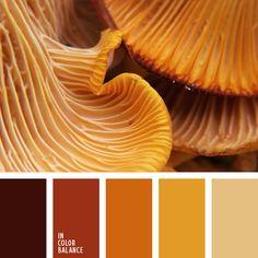 amarillo anaranjado, color cobre, color cuero rojizo, color marrón anaranjado, color ocre, color rebozuelo, color seta anaranjada, color yema de huevo, colores para la decoración, elección del color, paletas de colores para decoración, paletas para un diseñador, tonos anaranjados y