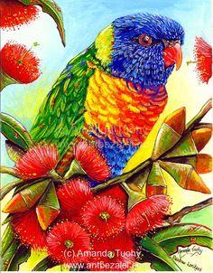 Wildlife Art and Design by AmandaTuohyArt