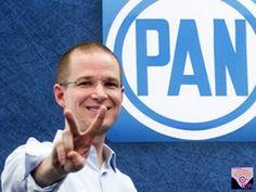 Arrasa Ricardo Anaya Cortés, en elección interna del PAN 81% de los votos con un avance de 92% en el conteo de actas al obtener 81% de los votos con un avance de 92% en el conteo de actas, informó la Comisión Organizadora de la Elección de Presidente del CEN (Conecen), mientras Javier Corral tenía 16% de los sufragios.