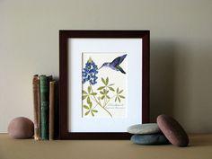"Pressed flower print, 8"" x 10"" matted, Bluebonnet flower with hummingbird, no.003"