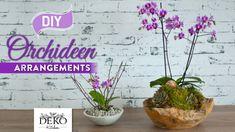 DIY: Orchideen effektvoll dekorieren [How to] | Deko Kitchen