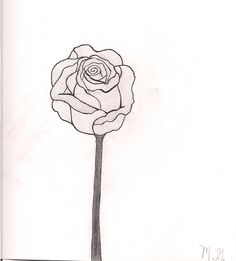 Enjoy the tender colored rose orange a realistic pastel for Something hard to draw