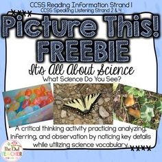 This is a FREE Sample of the Science Picture of the Day activity or science warm up center.  Students analyze real life photographs and infer the science in it.  It is an excellent way to practice observation, noting key details, and more.  Download at:  https://www.teacherspayteachers.com/Product/FREE-Science-Picture-of-the-Day-2427813
