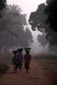 Women on their way to the market in the early morning. Guinea Bissau.                                                                                                                                                                                 Plus