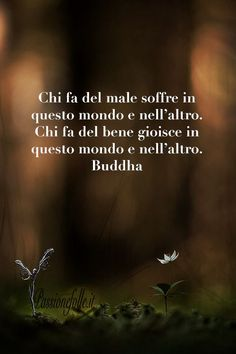 Bene e male Great Words, Some Words, Italian Quotes, Buddha Quote, Lessons Learned In Life, Osho, Dalai Lama, Wise Quotes, Yoga