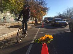 ひまわりの活けられたコーンが置かれ、快適に走れるようになった自転車レーン。