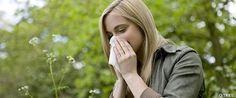 La Alimentación en Época de Alergias. Leer aquí http://www.suplments.com/econutricion/la-alimentacion-en-epoca-de-alergias/