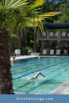 Calistoga Spa Hot Springs features four geothermal mineral pools, including a whirlpool, soaking pool, multi-lane lap pool and a wading pool for the kids.
